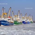 Texel Winter 01