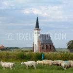 Texel Den Hoorn 04