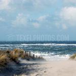 Dunes / Duinen 03