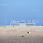 Texel Ferry Boat / Veerboot Texelstroom