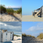 Texel collage 06