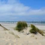 Dunes / Duinen 22